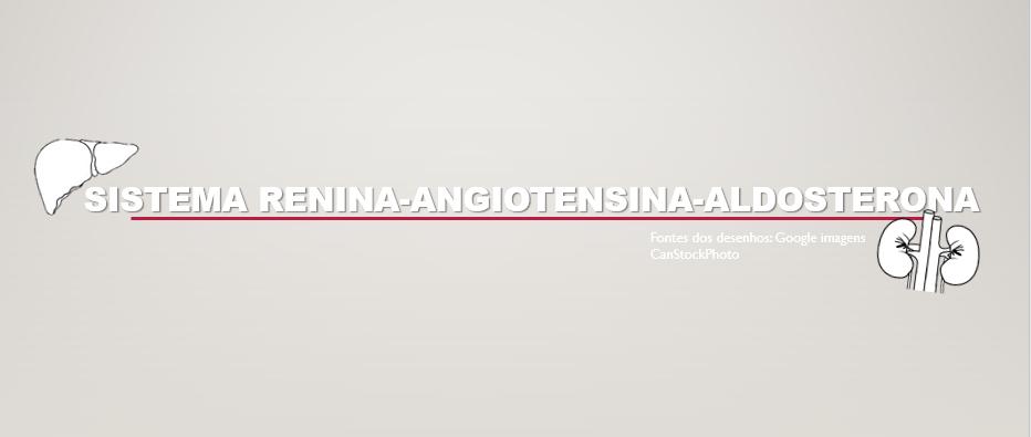 Sistema Renina-Angiotensina-Aldosterona