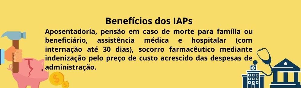 Era Vargas IAPS