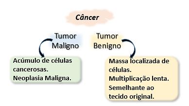 Câncer/Oncogênese