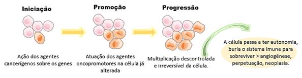 Oncogênese